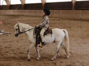 Pony voll im Griff